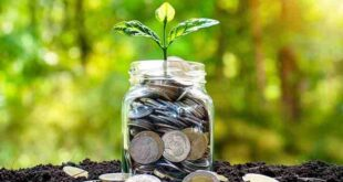Perbedaan Investasi dan Tabungan